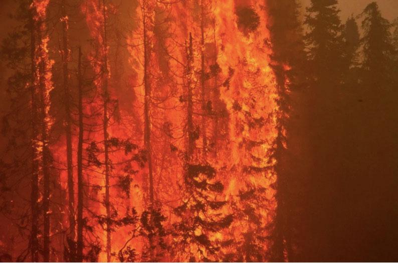 Stora skogsbränder i Alaska
