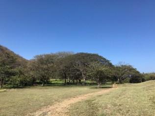 CostaRica2017 (13 of 29)