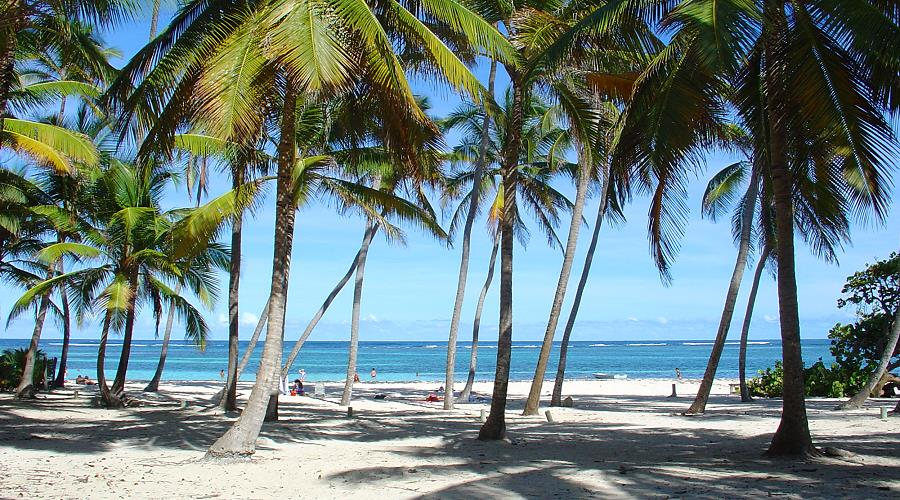 Caribbean And Atlantic Beaches In Martinique MartinicaOnline