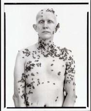 avedon_beekeeper