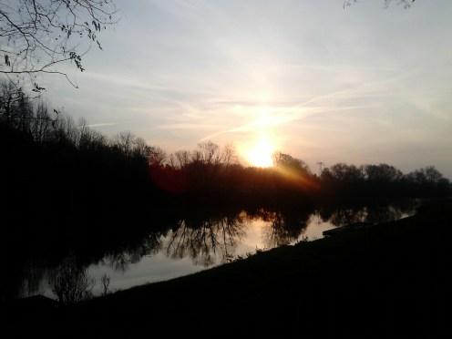 Petition für den Erhalt der Linden am Riveufer