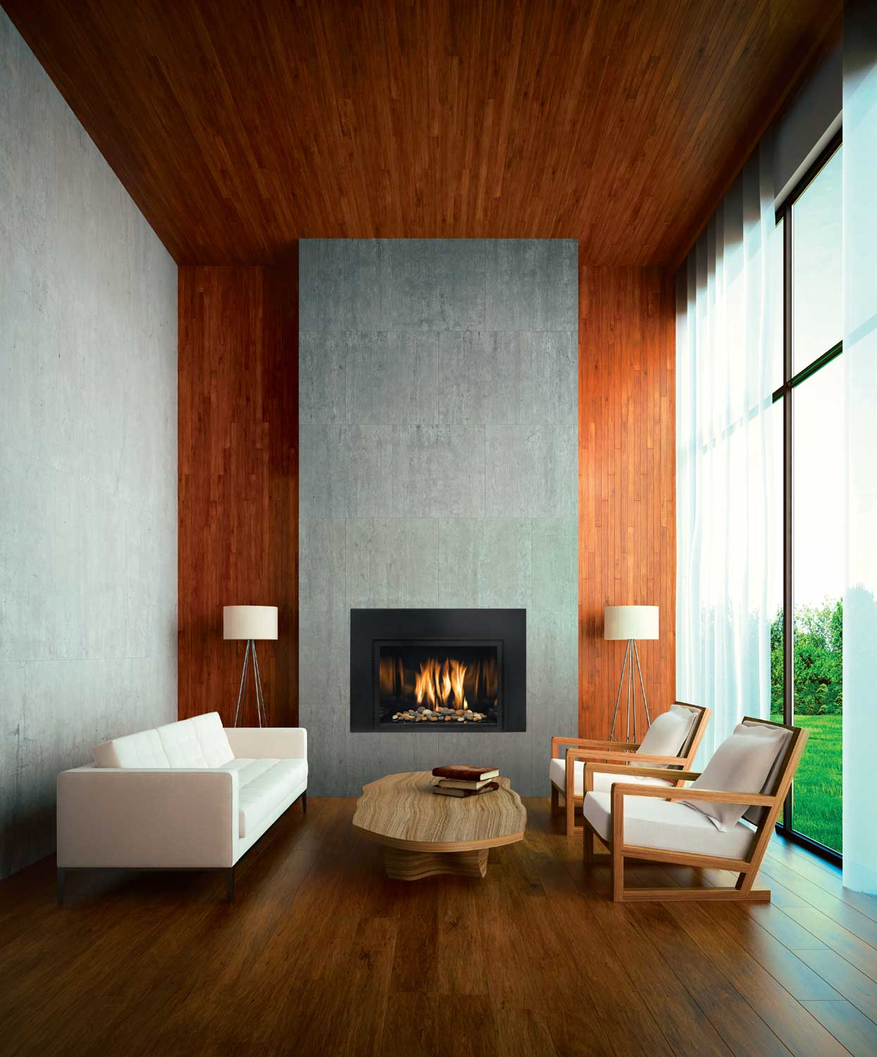 Gas Inserts  Martins Fireplaces