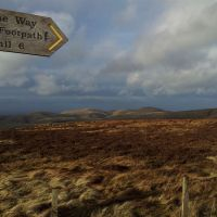 A Favourite Walk in the Cheviots - 10 miles over Shillhope Law and Windy Gyle from Trows Rd End (Slymefoot) in Upper Coquetdale