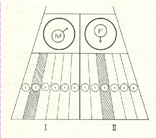 L72-2