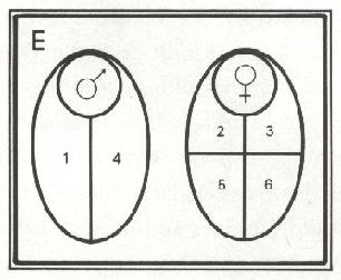 L76-9