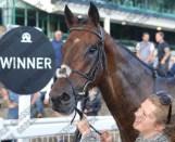 Taopix 25/1 winner, Newcastle, August 2016