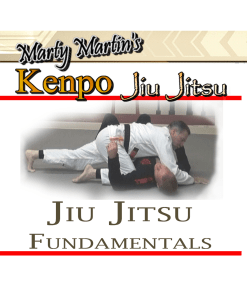 Enter Jiu Jitsu Fundamentals Overview
