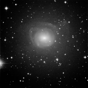Supernova in NGC2655