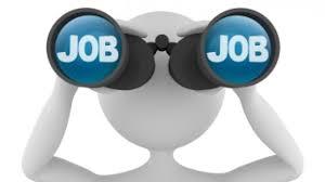 DSE Mizoram Jobs Recruitment डायरेक्टरेट ऑफ स्कूल एजुकेशन मिजोरम