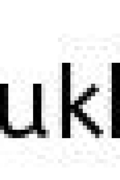 大量サンタが大阪城公園から道頓堀まで乗船