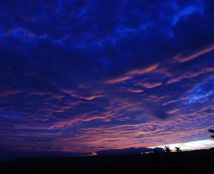 ある農園の朝の空