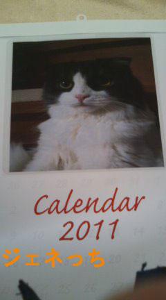 2011年A3カレンダー