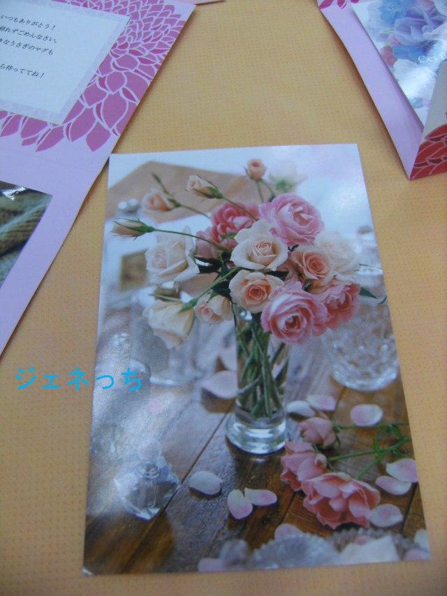 ポストカード お花の写真