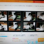 Thumbnail of related posts 076