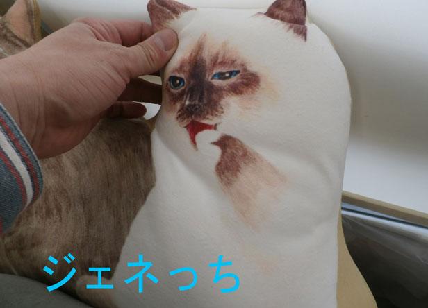 猫まみれクッション触る