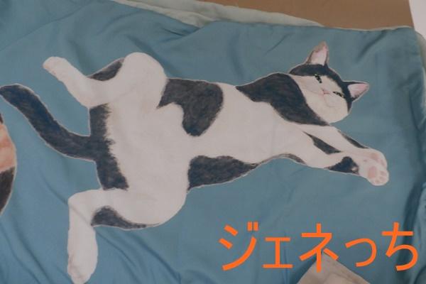 猫まみれまくら&布団カバー