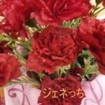 鉢植えセット「京・伏見 三源庵 黒豆ロールカステラ」のお花