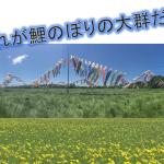 栃木県那須町に鯉のぼりの大群が出現!早速行ってみた。