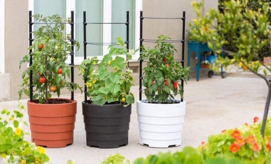 gardener s supply