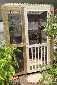 preschool butterfly habitat