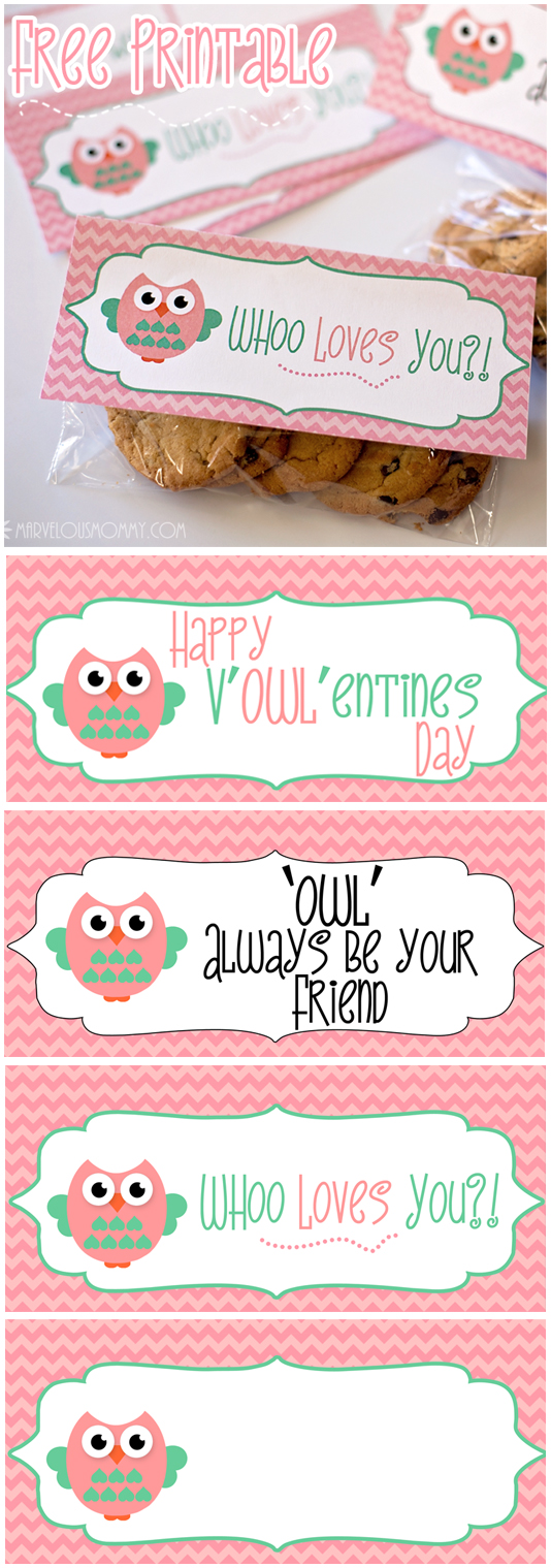 Diy Owl Pillow Boxes Free Valentine Printable Marvelous Mommy
