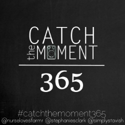 catchthemoment365