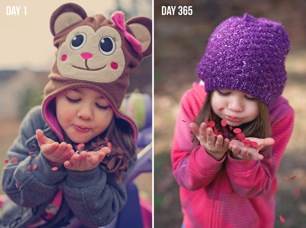 Day-1---Day-365-BLOG