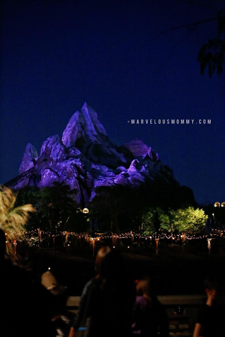 Disney World-4549-Edit_BLOG