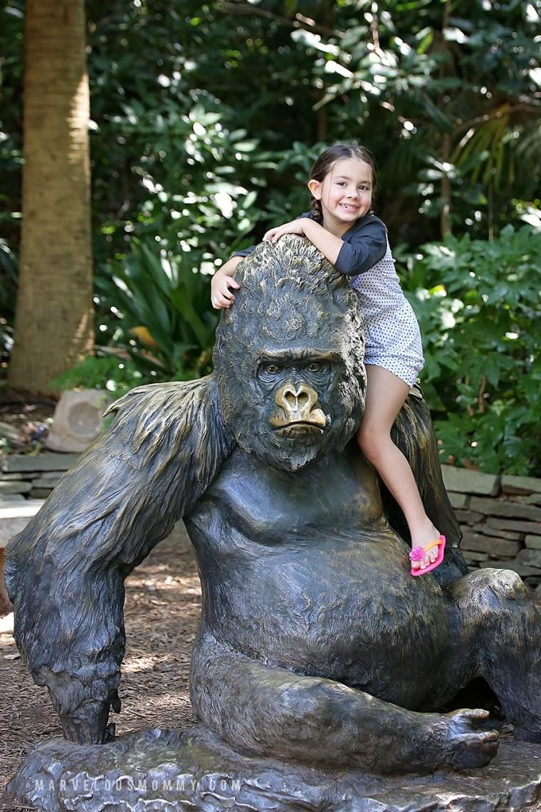 Zoo Atlanta-338-Edit_BLOG
