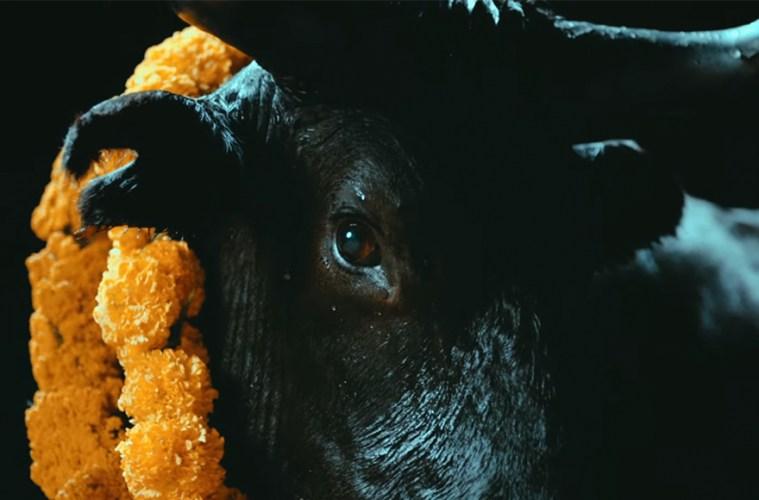 "Foals estrena video de ""Black Bull"", primer sencillo de su próximo disco ""Everything Not Saved Will Be Lost - Part 2"""