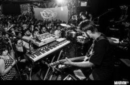 sonido-gallo-negro-concierto-foro-indie-rocks-boletos