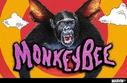 monkeybee-festival-sangriento-jasmina-hirschl-miguel-servin-18-diciembre
