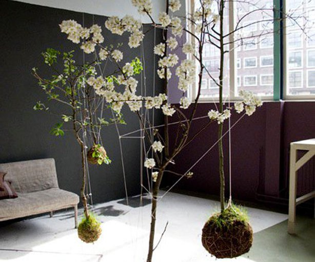 Gorgeous String Gardens