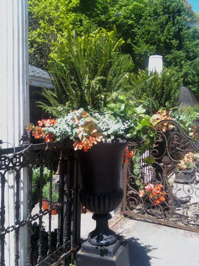 Custom Container Gardening at your Home