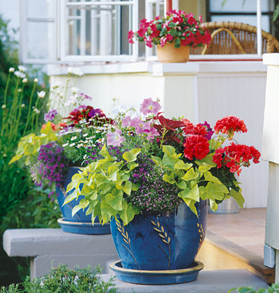 Surround Your House With Flowers