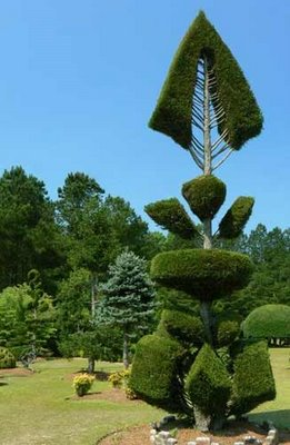 The Topiary Traditions of Pearl Fryar
