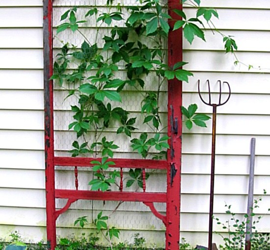 3 Creative Tools To Help a Garden Grow Vertically