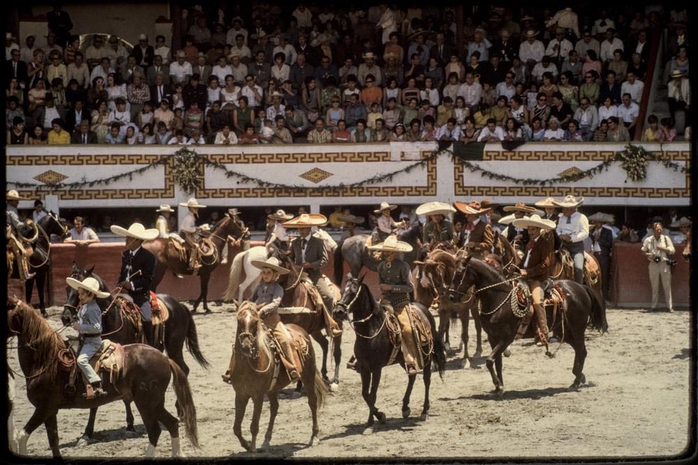 Horses, Spanish, Men, Equestrian,