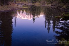 Beaver Pond -- Kananaskis Country Alberta, Canada
