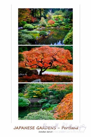 Japanese Gardens Portland Oregon
