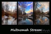 multnomah stream