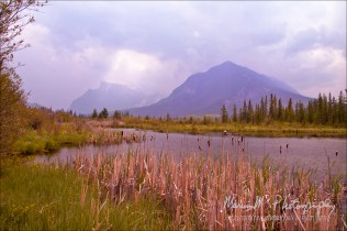 Looking southward toward Mount Rundel & Sanson Peak. Banff, Alberta