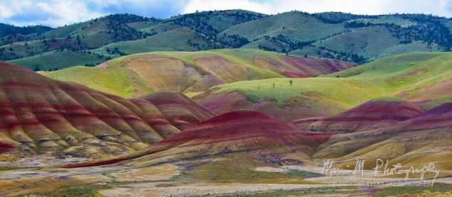 John Day Fossil Beds National Monument, Painted Hills