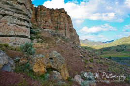 John Day Fossil Beds National Monument, Clarno site (one of three sites)