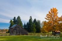 Oregon, Mulino