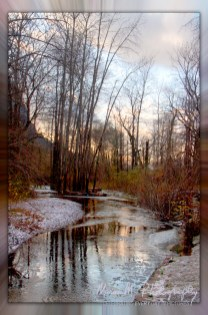 Vivid Winter colors of the stream, barren trees and sky at the entrance to the falls