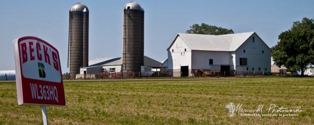 white barn farm arcola illinois