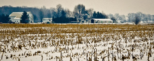 A cold Winter's day in December '07 when I went back home to see dad (for my last time) the harvested corn field across the road from mom & dad's house made a great foreground for the Joni Hochstetler farm.