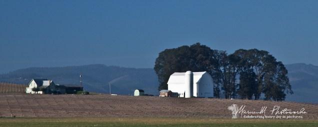 oregon farm scene amity marvinm photoworks