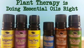 How I Became a Certified Aromatherapist - Marvy Moms